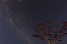 Milky way over Ndutu