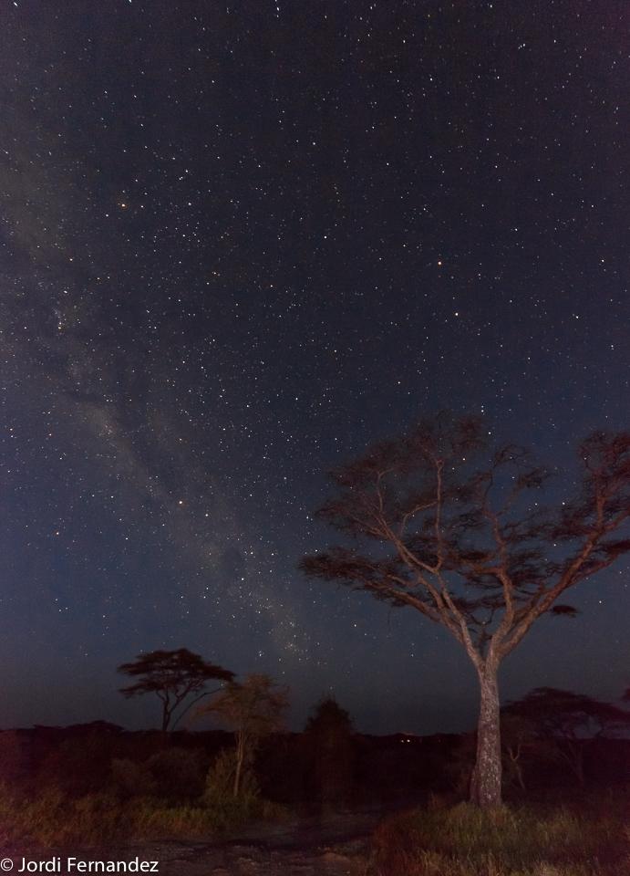 Milky Way over Ndutu